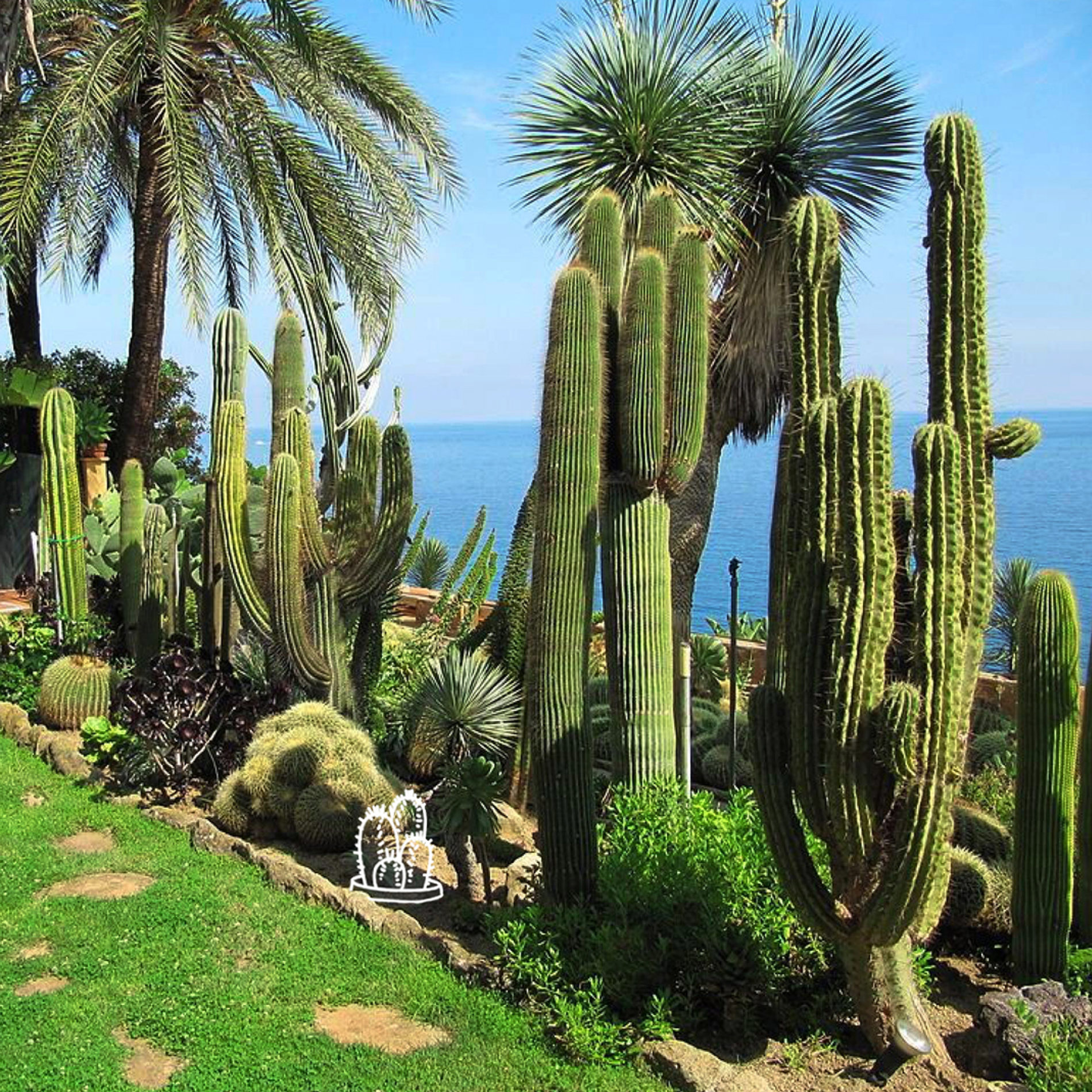 Giardini tematici e personalizzati
