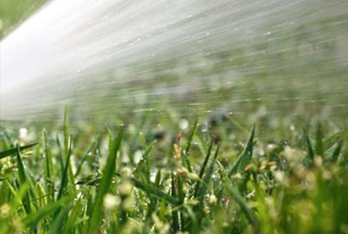 irrigazione.jpg 3