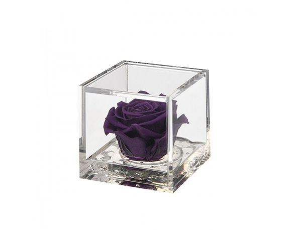 Flowercube Meidum Rosa Viola