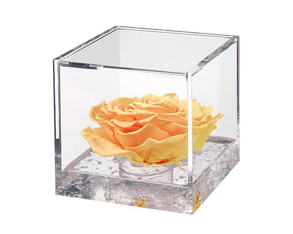 Flowercube Extra Large Rosa Gialla
