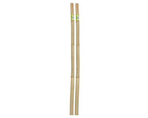 Canne Bamboo Naturali 210 Cm