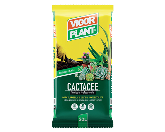 Terriccio Cactacee 20lt – Vigorplant