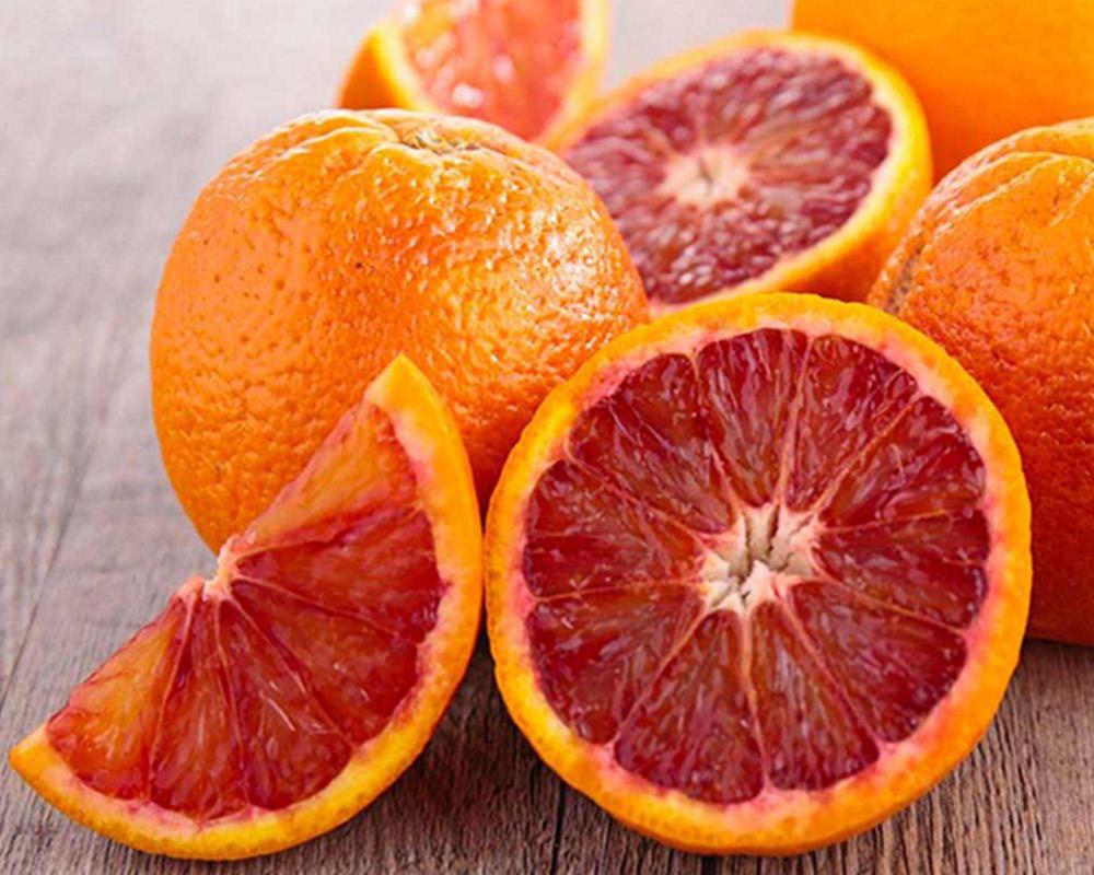 arancio tarocco fitocella 1