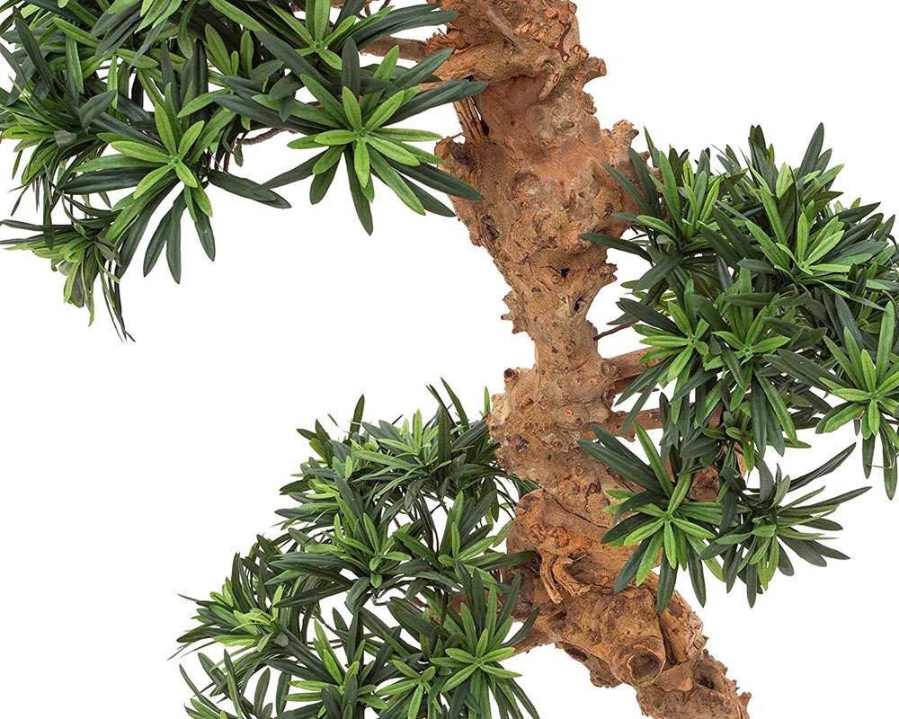 bonsai piante da interno piante verdi oz planten vaso 13 13 1