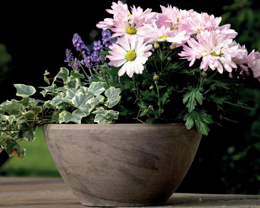 ciotola basalto maloja corino bruna vasi e coprivaso giardinaggio