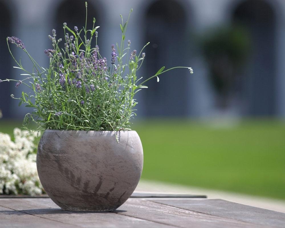 mini ciotola luna basalto 8cm corino bruna vasi e coprivaso giardinaggio.jpg2