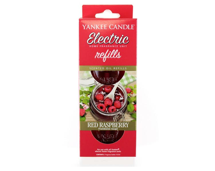 raspberry standard 2 1