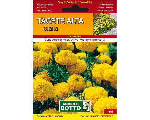 TAGETE ALTA GIALLA