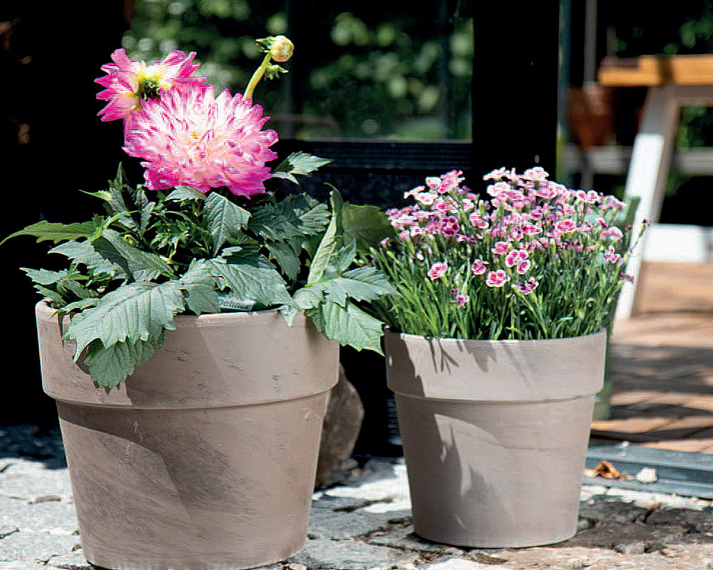 vaso calima basalto cm corino bruna vasi e coprivaso giardinaggio.jpg22