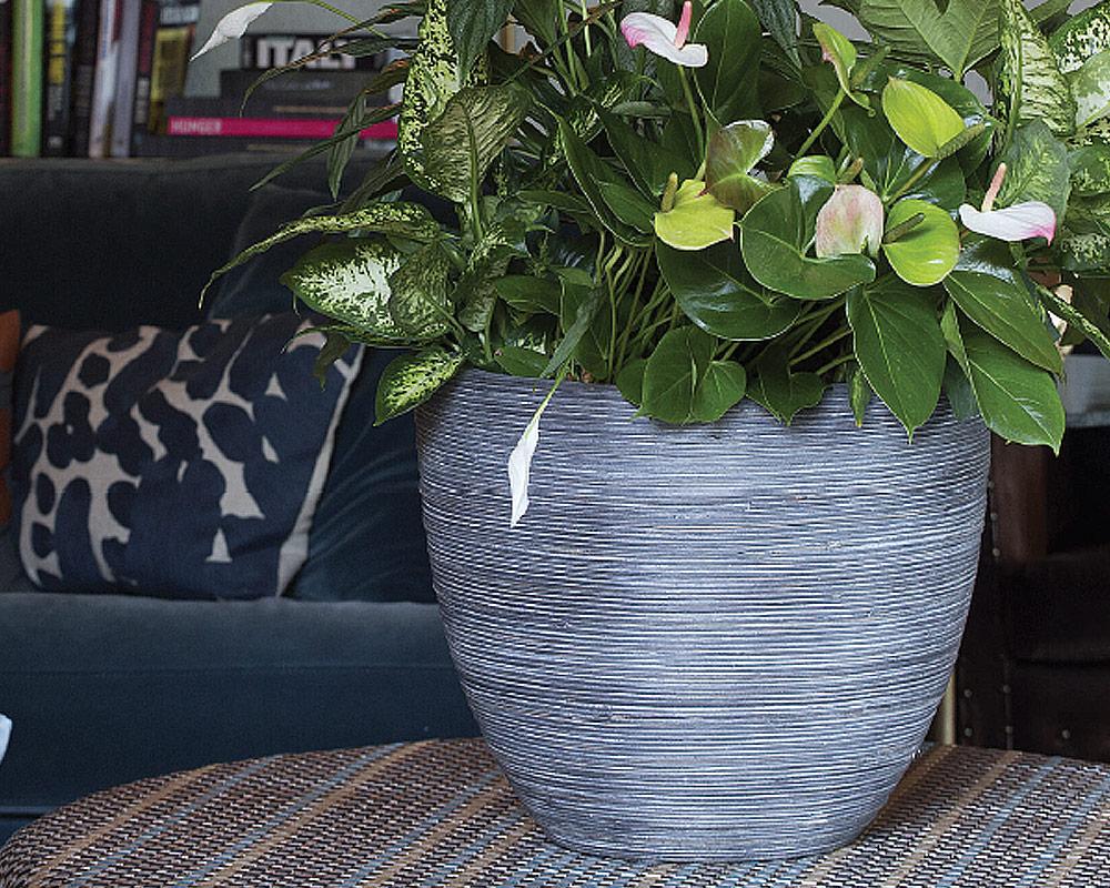 vaso midollino in basdallto corino bruna vasi e coprivaso giardinaggio