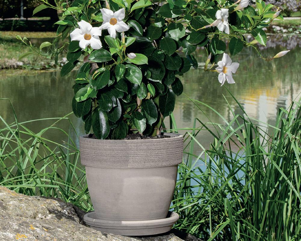vaso palladio graffiato terracotta vulcano corino bruna vasi e coprivaso giardinaggio ambiente