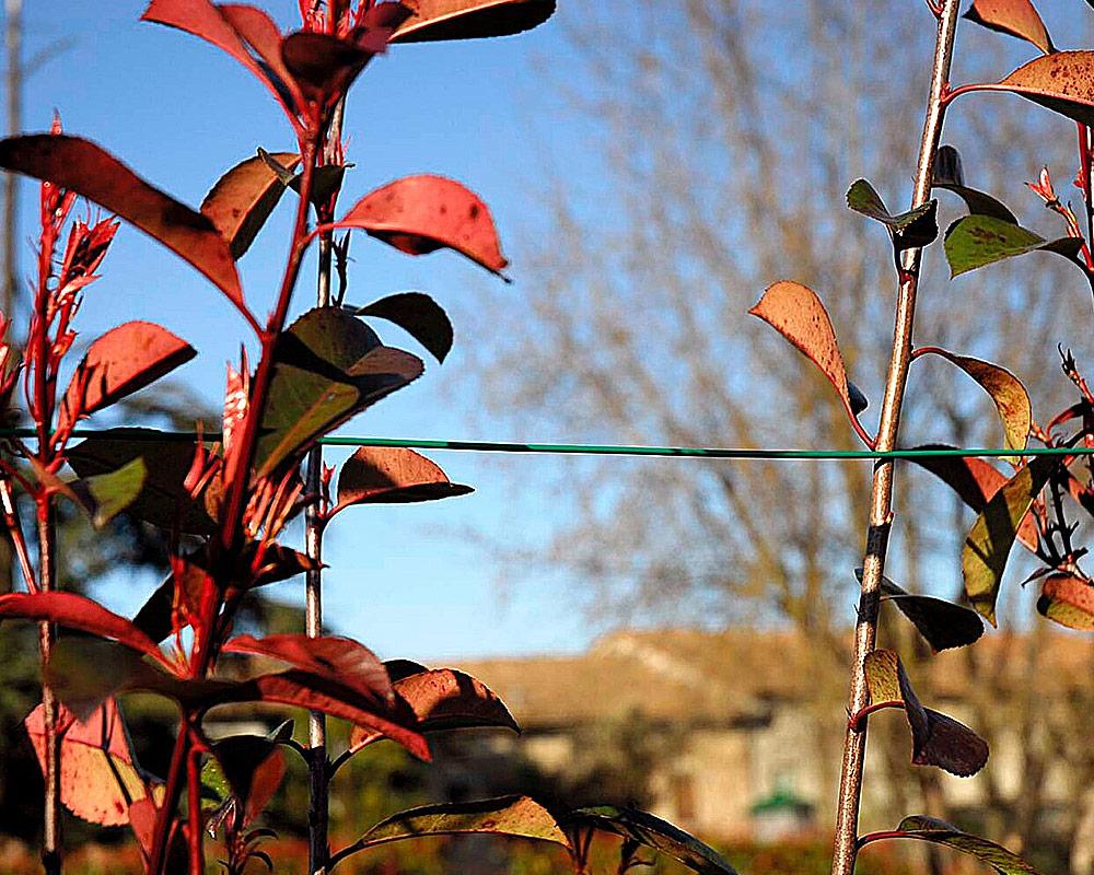 filo dacciaio galvanizzato attrezzi da giardino tutori giardinaggio.1