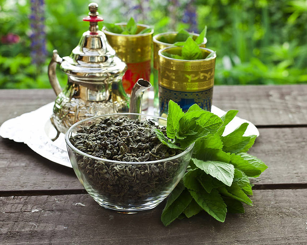 menta marocchina piantee aromatiche piante da orto piante e fiori i sapori del mio orto.2