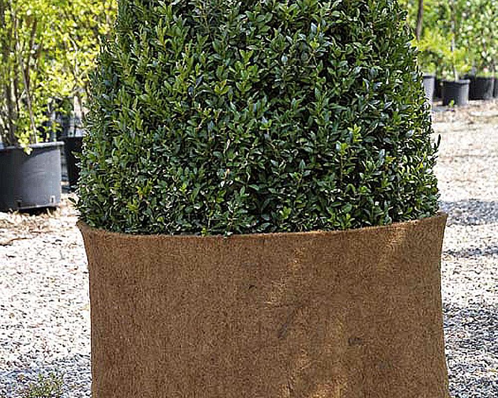 stuoia di cocco protezione attrezzi tessuto verdemax giardinaggio