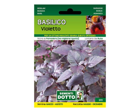 Basilico Violetto