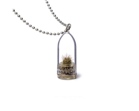 Collana Capsula Aurora Cactus Bonsai La Felicita' Classic