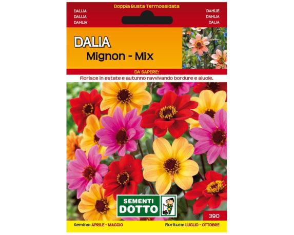 Dalia Mignon Mix