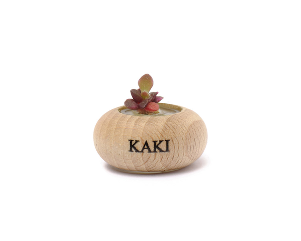 WOODEN JAR STONE ROSE BONSAI ORIGINAL  KD012 KAKI LIFE