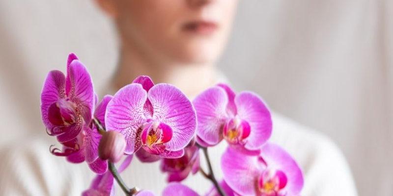 Tipi Di Orchidea