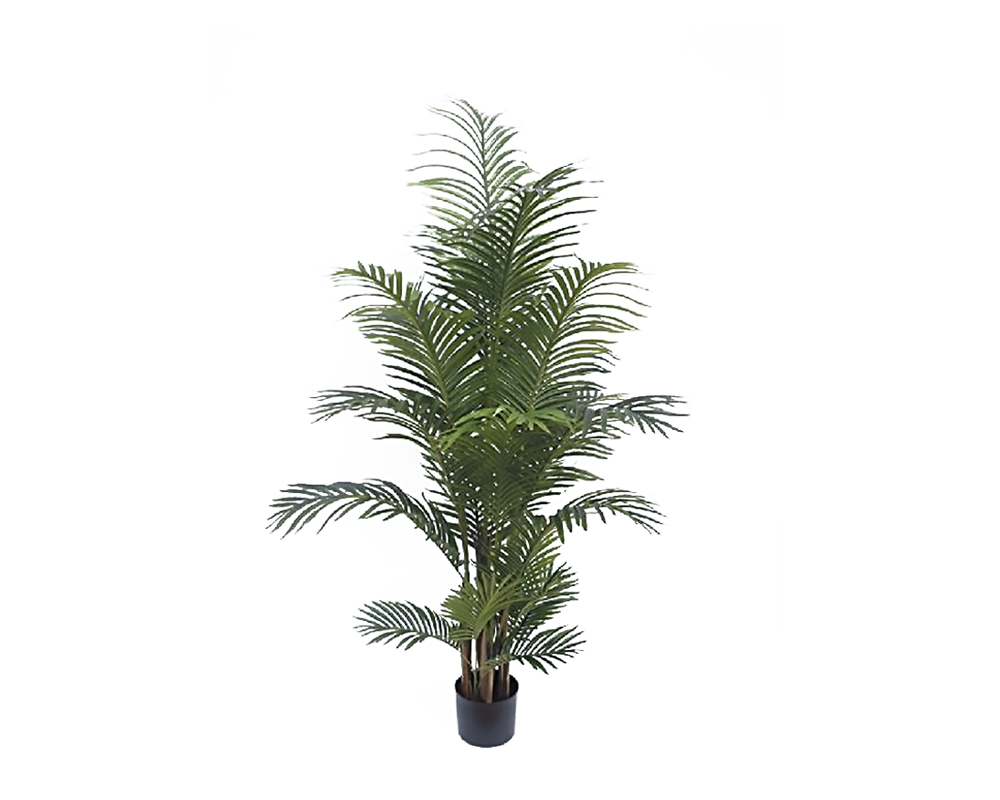 ARECA 145CM REAL TOUCH 5 PALI IN VASO 72532417