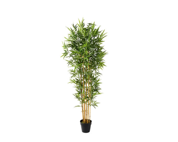 Bamboo Artificiale In Vaso H155