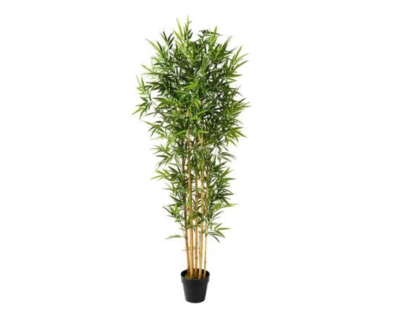 Bamboo Artificiale In Vaso H220