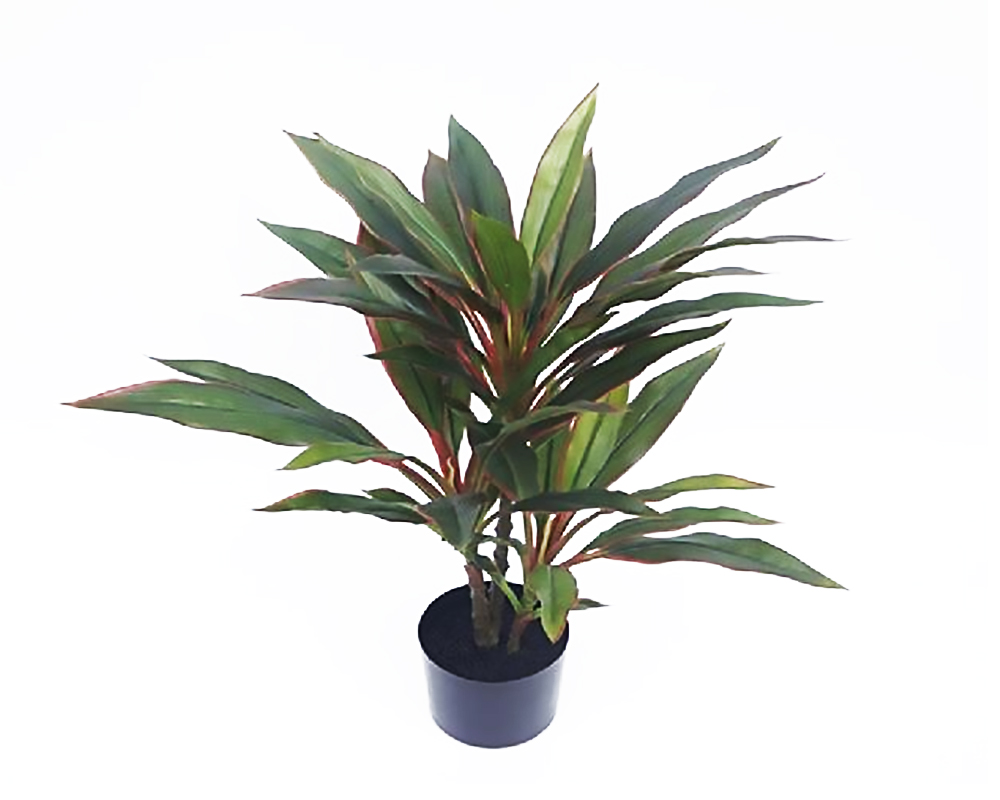 DRACAENA 60CM REAL TOUCH IN VASO 72532411