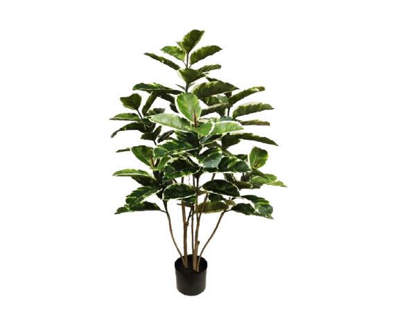 Ficus Elastica Artificiale In Vaso H120