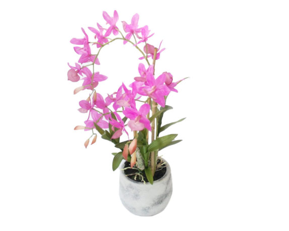 Orchidea Phalaenopsis Artificiale Rosa Beauty In Vaso H53