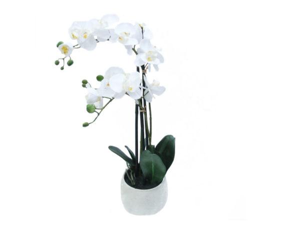 Orchidea Phalaenopsis Artificiale Bianco In Vaso Tondo H66
