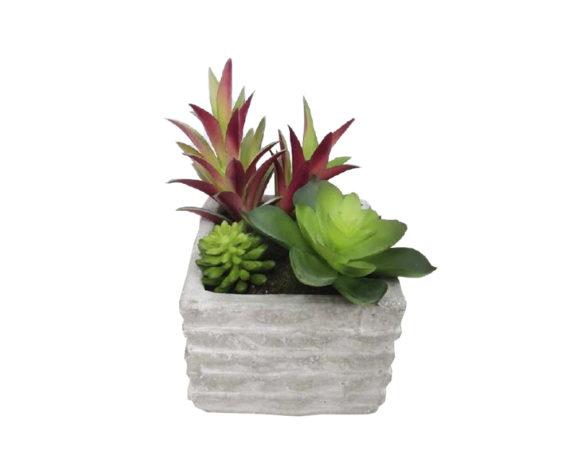 Pianta Grassa Artificiale In Vaso Cemento H13