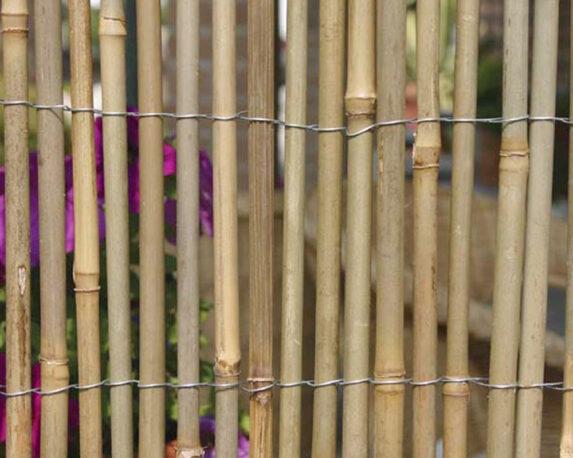 Arella Bamboo Naturale A Canna Grossa